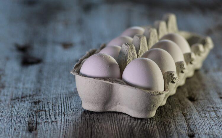Schweizer Eierproduktion in Gefahr
